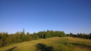 Photo 8: #3-51227 RGE RD 270 Road: Rural Parkland County Rural Land/Vacant Lot for sale : MLS®# E4211009