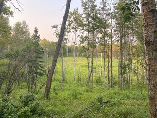 Photo 9: Lot 2 Range Road 33 in Rural Rocky View County: Rural Rocky View MD Land for sale : MLS®# A1134534