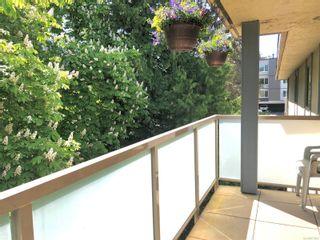 Photo 10: 503 1025 Inverness Rd in : SE Quadra Condo for sale (Saanich East)  : MLS®# 876092