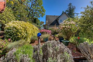 Photo 6: 517 Comerford St in VICTORIA: Es Saxe Point House for sale (Esquimalt)  : MLS®# 786962