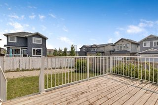 Photo 33: 144 Evansdale Common NW in Calgary: Evanston Detached for sale : MLS®# A1131898