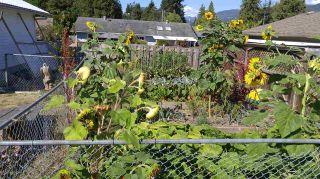 Photo 18: 5756 NEPTUNE Road in Sechelt: Sechelt District House for sale (Sunshine Coast)  : MLS®# R2491794