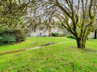 Photo 15: 7487 East Saanich Rd in : CS Saanichton House for sale (Central Saanich)  : MLS®# 872080