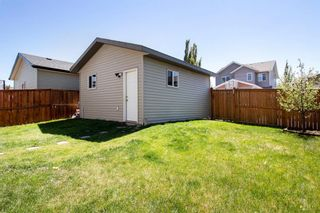 Photo 31: 955 Prairie Springs Drive SW: Airdrie Detached for sale : MLS®# A1115549