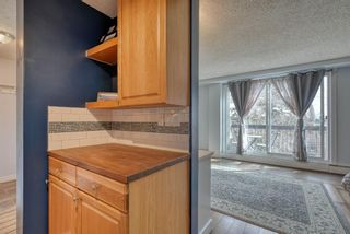 Photo 16: 306 315 Heritage Drive SE in Calgary: Acadia Apartment for sale : MLS®# A1090556