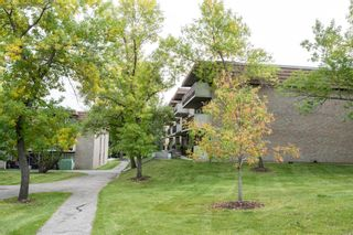 Photo 22: 55C 231 Heritage Drive SE in Calgary: Acadia Apartment for sale : MLS®# A1144362