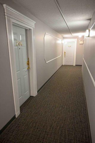 Photo 35: 204 10320 113 Street in Edmonton: Zone 12 Condo for sale : MLS®# E4250245