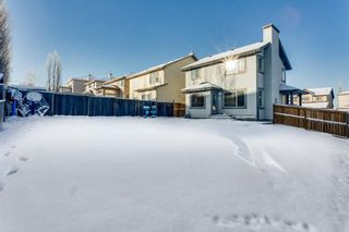 Photo 25: 229 PANAMOUNT Court NW in Calgary: Panorama Hills Detached for sale : MLS®# C4279977