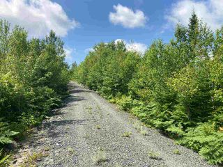 Photo 9: Lot 7 Highway 7 in Goldenville: 303-Guysborough County Vacant Land for sale (Highland Region)  : MLS®# 202015433
