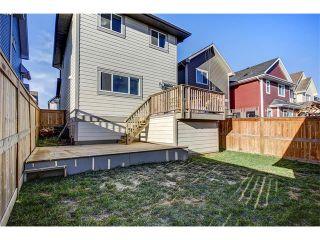 Photo 23: 169 MAHOGANY Heights SE in Calgary: Mahogany House for sale : MLS®# C4088923