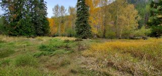 Photo 22: 789 Shuswap River Drive, in Lumby: House for sale : MLS®# 10240114