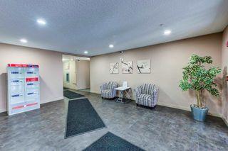 Photo 26: 420 274 MCCONACHIE Drive in Edmonton: Zone 03 Condo for sale : MLS®# E4253826