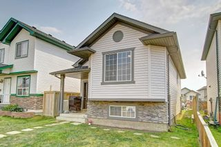 Photo 34: 288 SADDLEMEAD RD NE in Calgary: Saddle Ridge House for sale : MLS®# C4201588