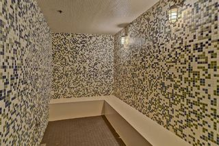 Photo 44: 505 626 14 Avenue SW in Calgary: Beltline Apartment for sale : MLS®# A1060874