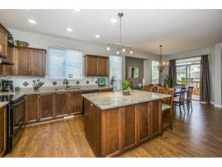 """Photo 7: 20148 70 Avenue in Langley: Willoughby Heights House for sale in """"JEFFRIES BROOK BY MORNINGSTAR"""" : MLS®# R2061468"""