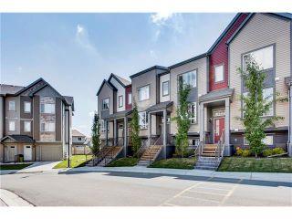 Photo 31: Luxury Calgary Realtor Steven Hill SOLD Copperfield Condo