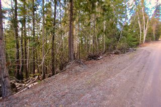 Photo 5: Lot 41 Klondike Trail: Anglemont Vacant Land for sale (North Shuswap)  : MLS®# 10228883