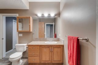 Photo 42: 23 Royal Crest Way NW in Calgary: Royal Oak Detached for sale : MLS®# A1118520