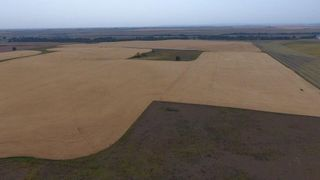 Photo 8: : Rural Foothills M.D. Land for sale : MLS®# C4137604