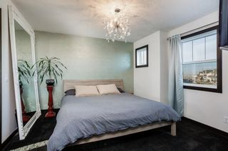 Photo 11: 115 SKYVIEW SPRINGS Gardens NE in Calgary: Skyview Ranch Detached for sale : MLS®# A1035316