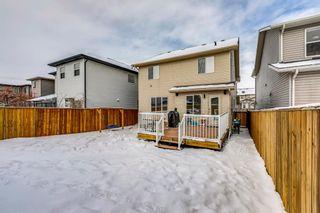 Photo 44: 69 SILVERADO Boulevard SW in Calgary: Silverado Detached for sale : MLS®# A1072031