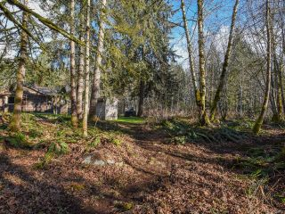 Photo 45: 3699 Burns Rd in COURTENAY: CV Courtenay West House for sale (Comox Valley)  : MLS®# 834832