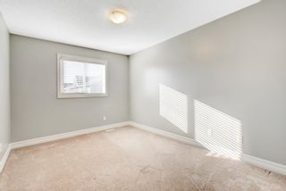 Photo 16: 3924 6 Street in Edmonton: Zone 30 House Half Duplex for sale : MLS®# E4264000