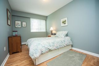 """Photo 11: 104 535 BLUE MOUNTAIN Street in Coquitlam: Central Coquitlam Condo for sale in """"REGAL COURT"""" : MLS®# R2081346"""