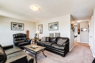 Photo 24: 158 Hillcrest Circle SW: Airdrie Detached for sale : MLS®# A1116968