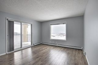 Photo 10: 7402 304 MacKenzie Way SW: Airdrie Apartment for sale : MLS®# A1081028