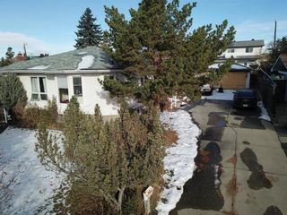 Photo 10: 2822 11 Avenue SE in Calgary: Albert Park/Radisson Heights Detached for sale : MLS®# A1046566