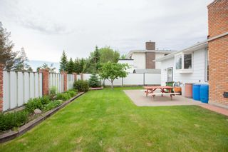 Photo 4: 4111 107A Street in Edmonton: Zone 16 House for sale : MLS®# E4249921