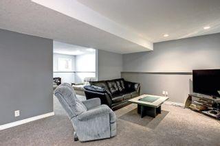 Photo 28: 39 LORNE Crescent: St. Albert House for sale : MLS®# E4262040