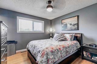 Photo 25: 8419 52 Street in Edmonton: Zone 18 House for sale : MLS®# E4246813