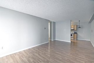 Photo 7: 504 1240 12 Avenue SW in Calgary: Beltline Apartment for sale : MLS®# A1093154
