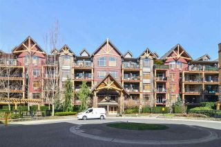 Photo 16: 270 8328 207A Street: Condo for sale in Langley: MLS®# R2551544