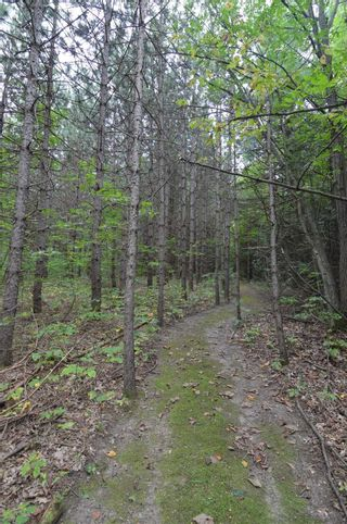 Photo 13: 221 Old Percy Road in Cramahe: Castleton Property for sale : MLS®# X5398941