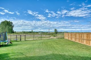 Photo 49: 137 Sandpiper Point: Chestermere Detached for sale : MLS®# A1021639