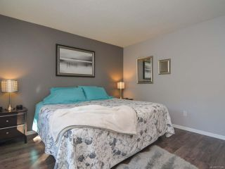 Photo 22: 3797 MEREDITH DRIVE in ROYSTON: CV Courtenay South House for sale (Comox Valley)  : MLS®# 771388