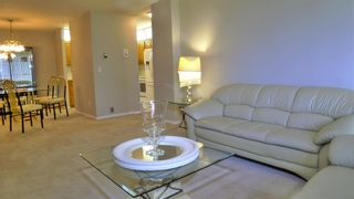 Photo 4: 304 521 57 Avenue SW in Calgary: Windsor Park Apartment for sale : MLS®# A1009068
