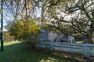 "Photo 46: 1781 DELTA Avenue in Burnaby: Brentwood Park House for sale in ""Brentwood Park"" (Burnaby North)  : MLS®# V1091341"