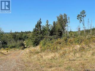 Photo 15: - Saint David Ridge in St. Stephen: Vacant Land for sale : MLS®# NB063465