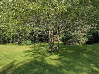 Photo 18: 72 Old Road Hill in Sherbrooke: 303-Guysborough County Residential for sale (Highland Region)  : MLS®# 202121825