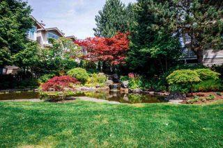 Photo 10: 74 6588 BARNARD Drive in Richmond: Terra Nova Townhouse for sale : MLS®# R2114850