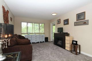 Photo 2: 411 11665 HANEY BYPASS in Maple Ridge: East Central Condo for sale : MLS®# R2263527
