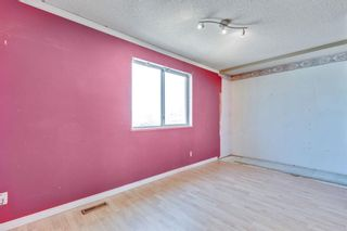 Photo 11: 106 Martindale Boulevard NE in Calgary: Martindale Detached for sale : MLS®# A1107169
