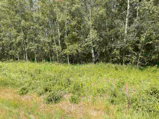 Photo 6: RGE RD 223 Twp Rd 594: Rural Thorhild County Rural Land/Vacant Lot for sale : MLS®# E4256609