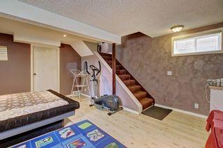 Photo 31: 307 FALTON Drive NE in Calgary: Falconridge Detached for sale : MLS®# C4238621