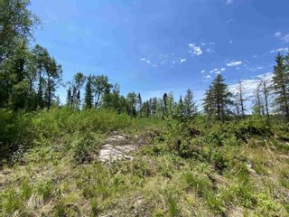 Photo 6: 31 SCHOOL ROAD in KENORA: Vacant Land for sale : MLS®# TB211480
