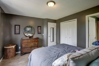 Photo 20: 50 Martha's Place NE in Calgary: Martindale Detached for sale : MLS®# A1119083